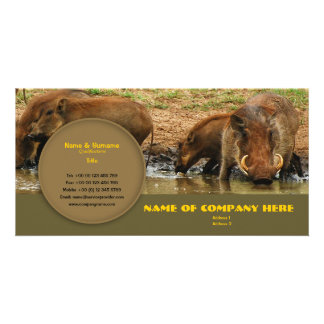 Travel agents, game lodges, hunting farms, safari card