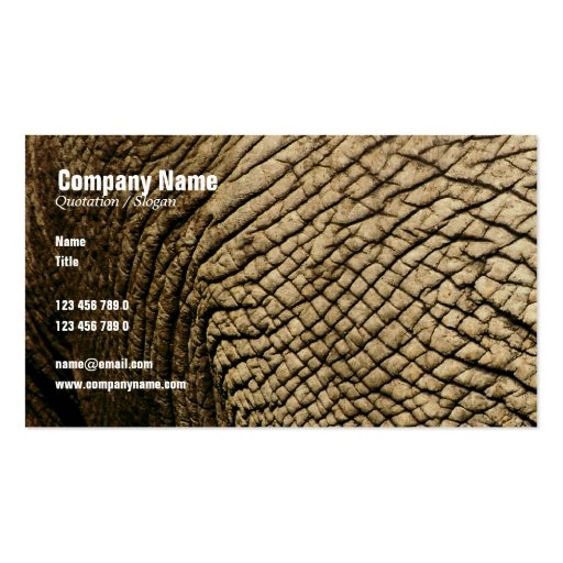 Travel agents, Safari tours, taxidermists, vets Business Card Template