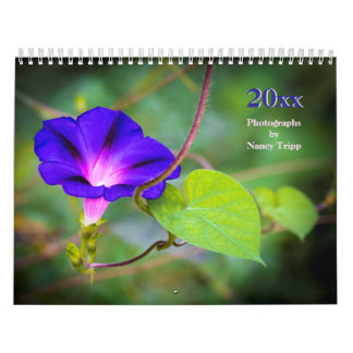 Travel and Floral Photography by Nancy Tripp Calendar
