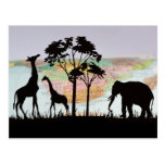Travel To See African Animals Postcard