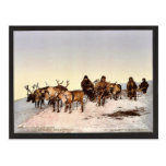 Traveling by reindeer, Archangel, Russia classic P Post Card