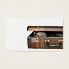 Traveling cat business card at Zazzle