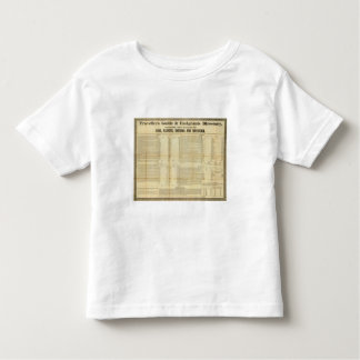 Travellers guide and emigrants directory toddler t-shirt