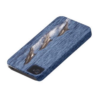 Travellng Dolphin on a beautiful day iPhone 4 Case-Mate Case