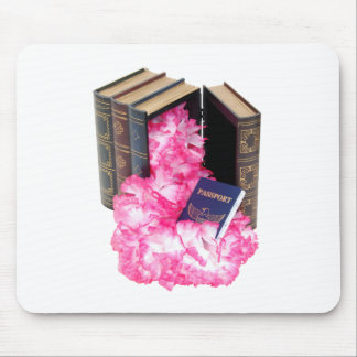 TravelResearch061809 Mousepad