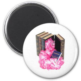TravelResearch061809 Refrigerator Magnets