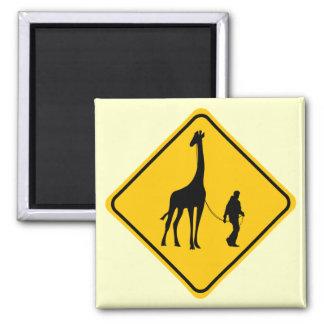 Travesía de la jirafa del mascota imán cuadrado