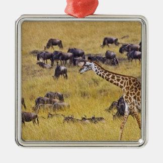 Travesía del río de Mara por las jirafas y Adorno Navideño Cuadrado De Metal
