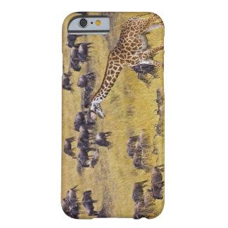 Travesía del río de Mara por las jirafas y Funda Barely There iPhone 6