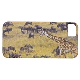 Travesía del río de Mara por las jirafas y Funda Para iPhone SE/5/5s