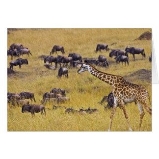 Travesía del río de Mara por las jirafas y Tarjeta De Felicitación