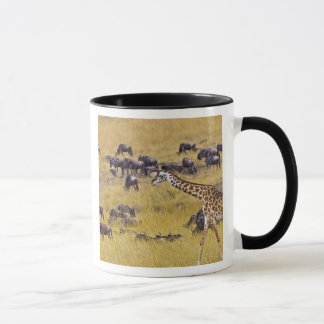 Travesía del río de Mara por las jirafas y Taza