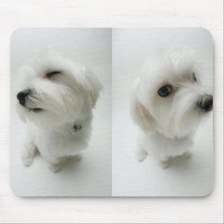 travieso-perritos tapetes de raton
