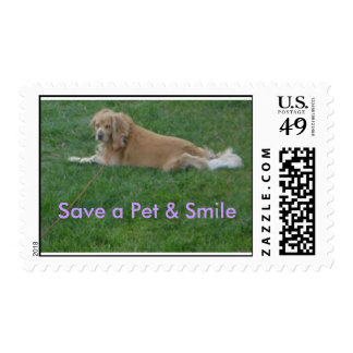 Travis' 037, ahorran un mascota y una sonrisa sellos postales