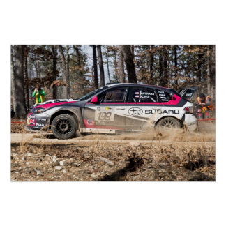 Travis Pastrana in the 100 Acre Wood Posters