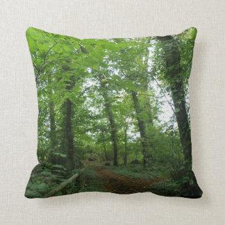 Trayectoria a través de la almohada verde del