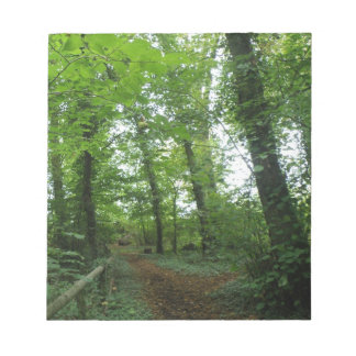 Trayectoria a través de la libreta verde del bosqu blocs