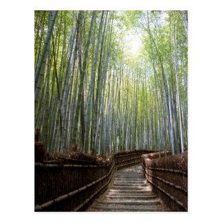 Trayectoria a través del bambú postales