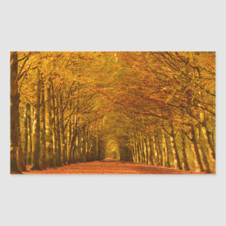 Trayectoria a través del bosque en sticke pegatina rectangular