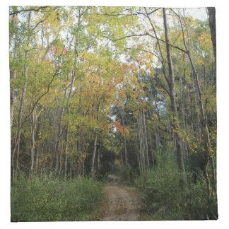 Trayectoria de bosque agradable del otoño servilleta