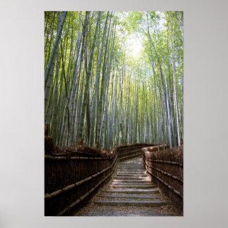 Trayectoria de bosque de bambú póster