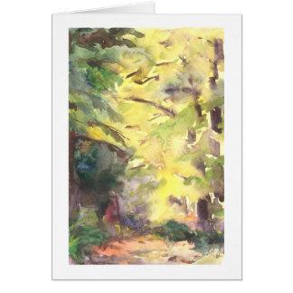 Trayectoria de bosque destacada por el sol tarjeta de felicitación