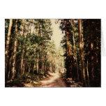 Trayectoria de bosque tarjetas