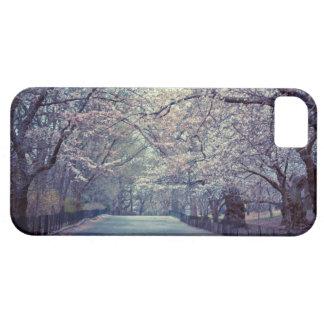 Trayectoria de la flor de cerezo del Central Park iPhone 5 Case-Mate Cárcasa