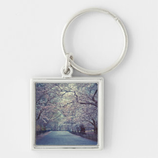 Trayectoria de la flor de cerezo del Central Park Llavero Cuadrado Plateado