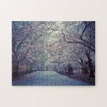 Trayectoria de la flor de cerezo del Central Park Puzzle Con Fotos
