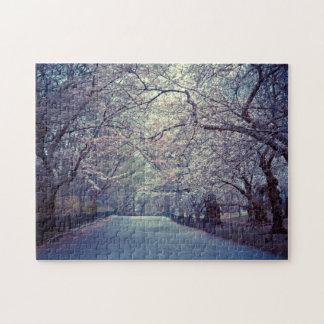 Trayectoria de la flor de cerezo del Central Park Rompecabeza