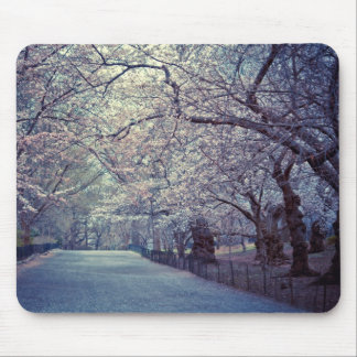 Trayectoria de la flor de cerezo del Central Park Tapetes De Ratones