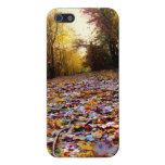 Trayectoria de la hoja del otoño (HDR) iPhone 5 Carcasas
