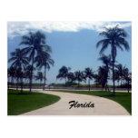 trayectoria de la playa de la Florida Postales