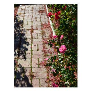 Trayectoria de la postal de los rosas