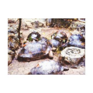 Trayectoria de la tortuga lienzo envuelto para galerias