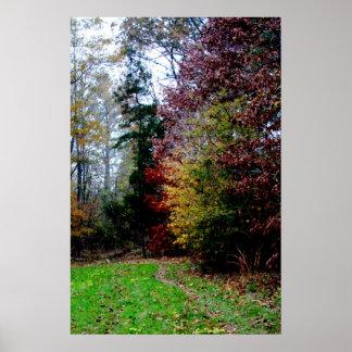 Trayectoria del arbolado del otoño impresiones