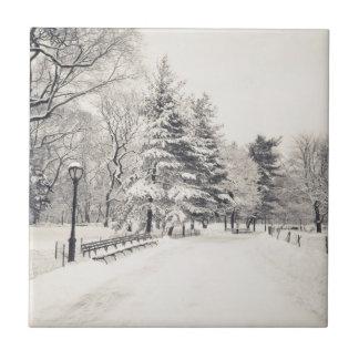 Trayectoria del invierno del Central Park - New Yo Azulejo Cuadrado Pequeño