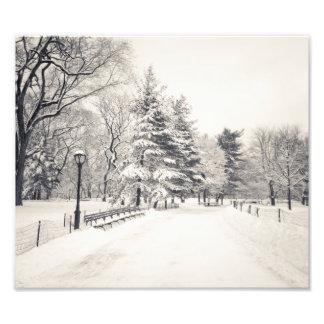 Trayectoria del invierno del Central Park - New Yo Cojinete