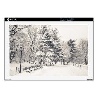 Trayectoria del invierno del Central Park - New Yo Calcomanías Para Portátiles