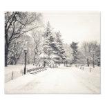 Trayectoria del invierno del Central Park - New Yo Fotografias