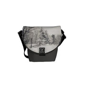 Trayectoria del invierno del Central Park - Nueva  Bolsa Messenger