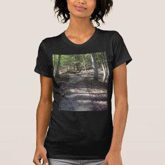 Trayectoria del lago camiseta