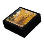 Trayectoria del otoño caja de recuerdo