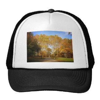 Trayectoria del otoño, Central Park, New York City Gorros