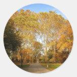Trayectoria del otoño, Central Park, New York City Pegatina Redonda