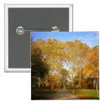 Trayectoria del otoño, Central Park, New York City Pins