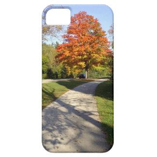 Trayectoria del parque del otoño de la caída iPhone 5 coberturas