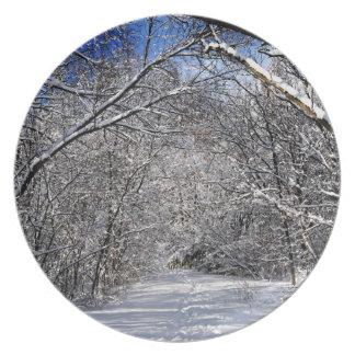 Trayectoria en bosque del invierno platos para fiestas