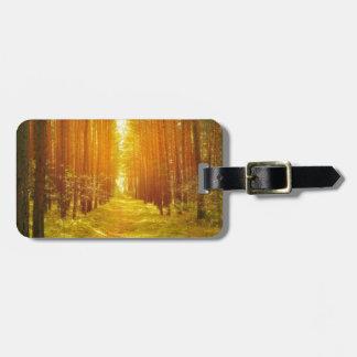 Trayectoria en el bosque en la salida del sol etiqueta para equipaje